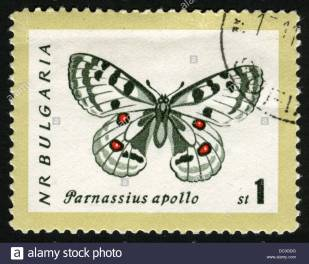 bulgariapost-markstamppostage-stampsbutterfly-animals-insects-butterfly-DC3GDG