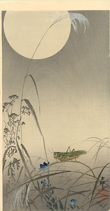 grasshoper-and-fool-moon