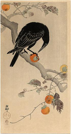 crow-eating-a-persimmon-jpgpinterestlarge