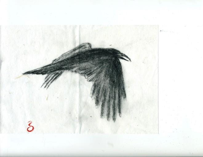 raven-raz-nov-16