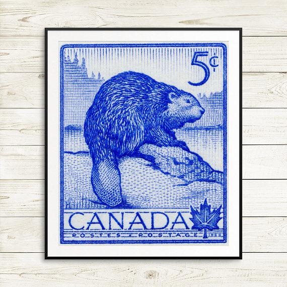 beaver stamp.jpg